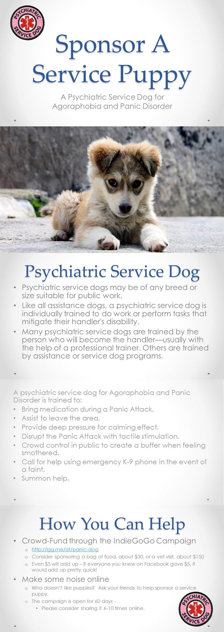 Psychiatric Service Dog Letter Template - 1749 Best Service Dogs Images On Pinterest